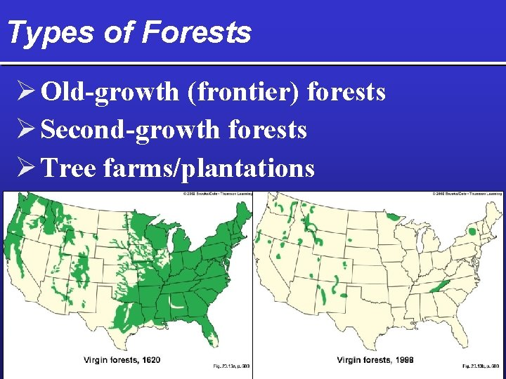 Types of Forests Ø Old-growth (frontier) forests Ø Second-growth forests Ø Tree farms/plantations