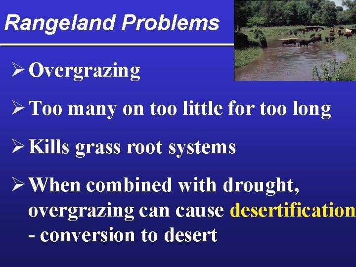 Rangeland Problems Ø Overgrazing Ø Too many on too little for too long Ø