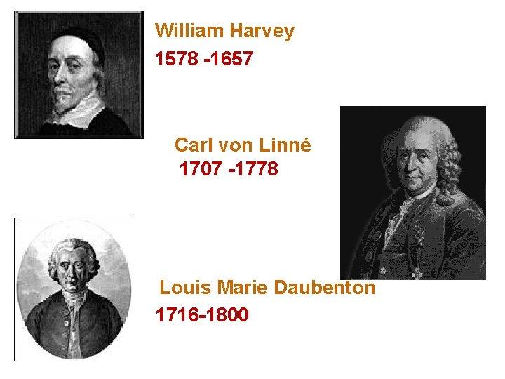 William Harvey 1578 -1657 Carl von Linné 1707 -1778 Louis Marie Daubenton 1716 -1800