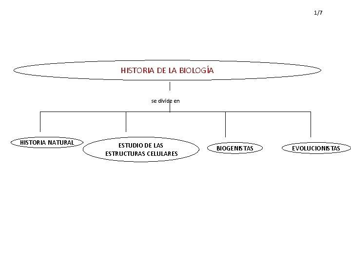1/7 HISTORIA DE LA BIOLOGÍA se divide en HISTORIA NATURAL ESTUDIO DE LAS ESTRUCTURAS