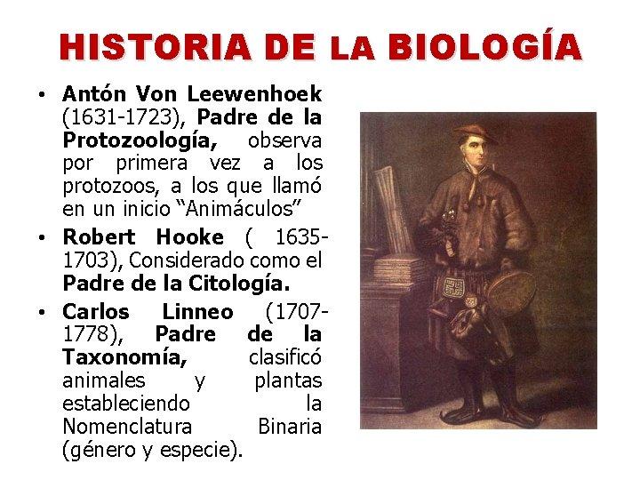 HISTORIA DE LA BIOLOGÍA • Antón Von Leewenhoek (1631 -1723), Padre de la Protozoología,