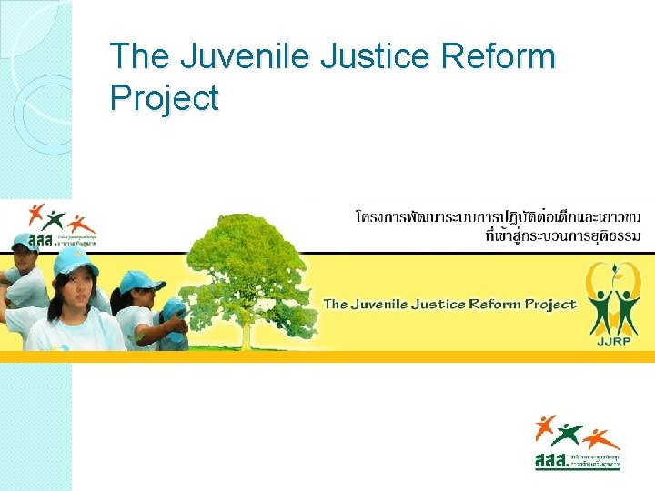 The Juvenile Justice Reform Project