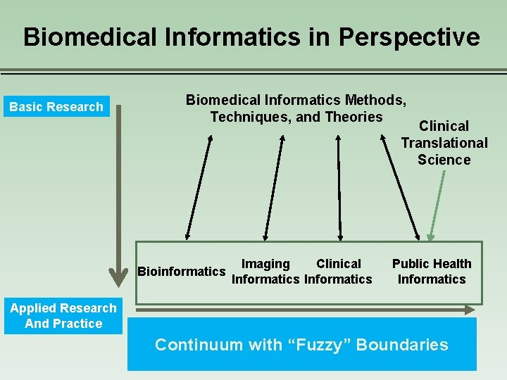 Biomedical Informatics in Perspective Basic Research Biomedical Informatics Methods, Techniques, and Theories Clinical Translational