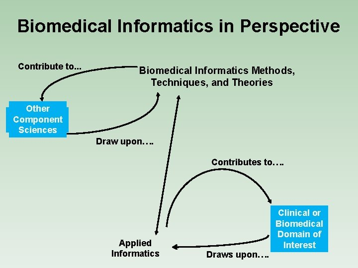 Biomedical Informatics in Perspective Contribute to. . . Biomedical Informatics Methods, Techniques, and Theories