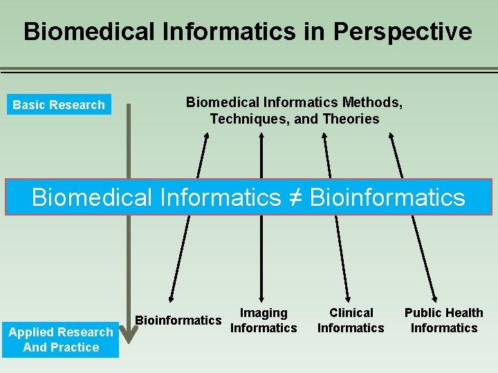 Biomedical Informatics in Perspective Basic Research Biomedical Informatics Methods, Techniques, and Theories Biomedical Informatics