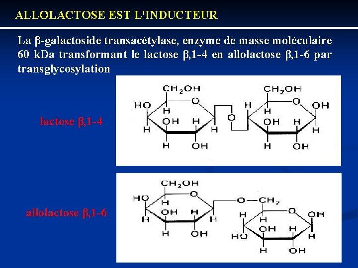 ALLOLACTOSE EST L'INDUCTEUR La β galactoside transacétylase, enzyme de masse moléculaire 60 k. Da