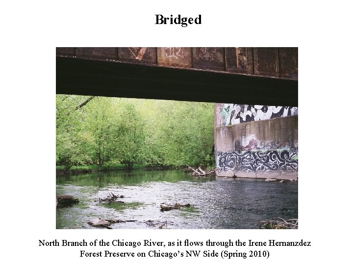 Bridged North Branch of the Chicago River, as it flows through the Irene Hernanzdez