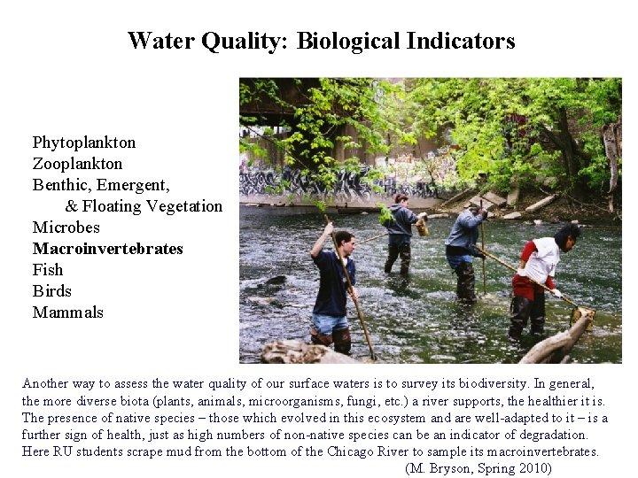 Water Quality: Biological Indicators Phytoplankton Zooplankton Benthic, Emergent, & Floating Vegetation Microbes Macroinvertebrates Fish