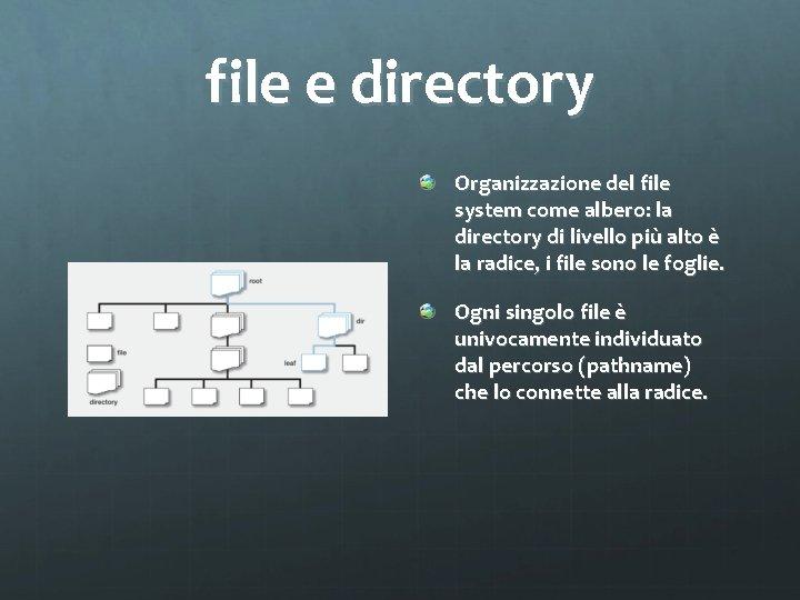 file e directory Organizzazione del file system come albero: la directory di livello più