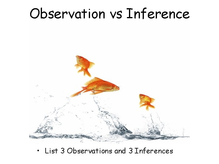 Observation vs Inference • List 3 Observations and 3 Inferences