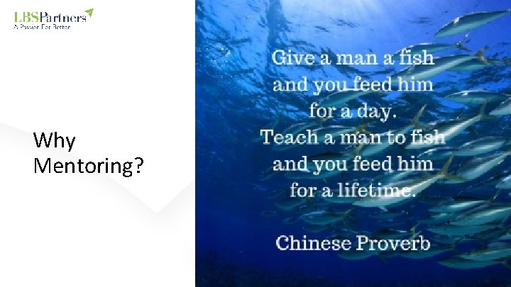Why Mentoring?