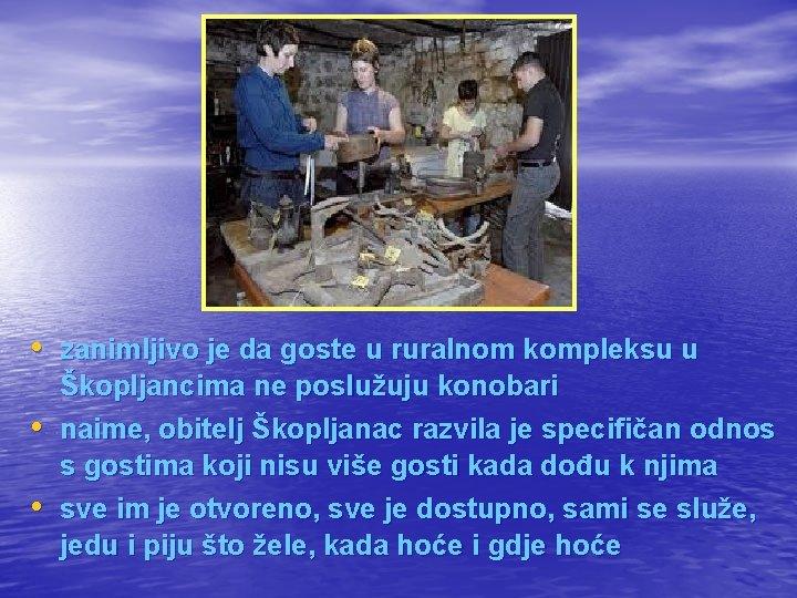 • zanimljivo je da goste u ruralnom kompleksu u • • Škopljancima ne