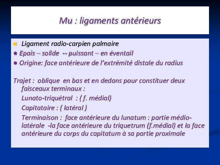 Mu : ligaments antérieurs Ligament radio-carpien palmaire ● Epais – solide -- puissant –