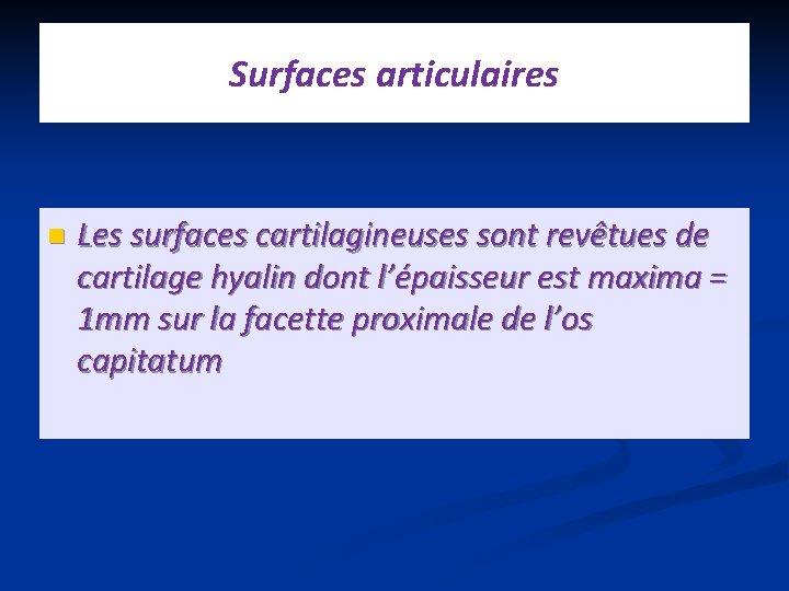 Surfaces articulaires n Les surfaces cartilagineuses sont revêtues de cartilage hyalin dont l'épaisseur est