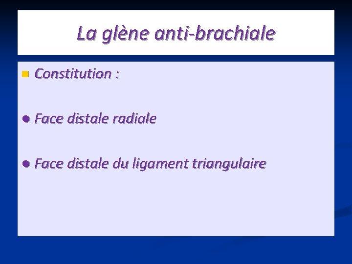 La glène anti-brachiale n Constitution : ● Face distale radiale ● Face distale du