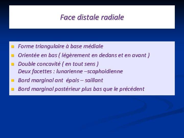 Face distale radiale n n n Forme triangulaire à base médiale Orientée en bas
