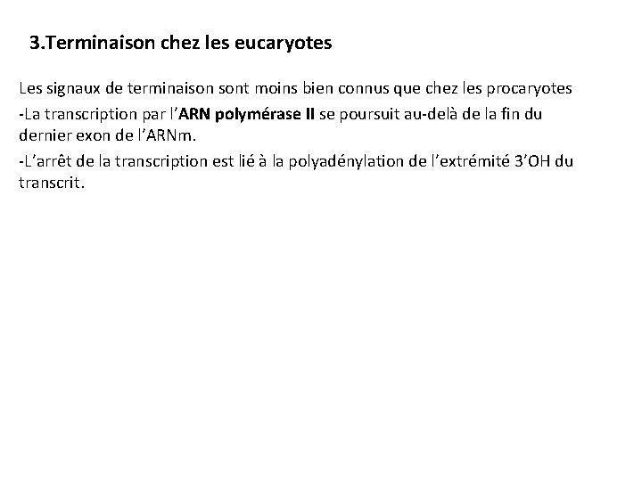 3. Terminaison chez les eucaryotes Les signaux de terminaison sont moins bien connus que