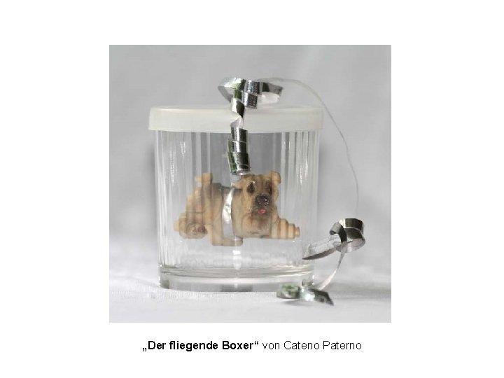 """""""Der fliegende Boxer"""" von Cateno Paterno"""