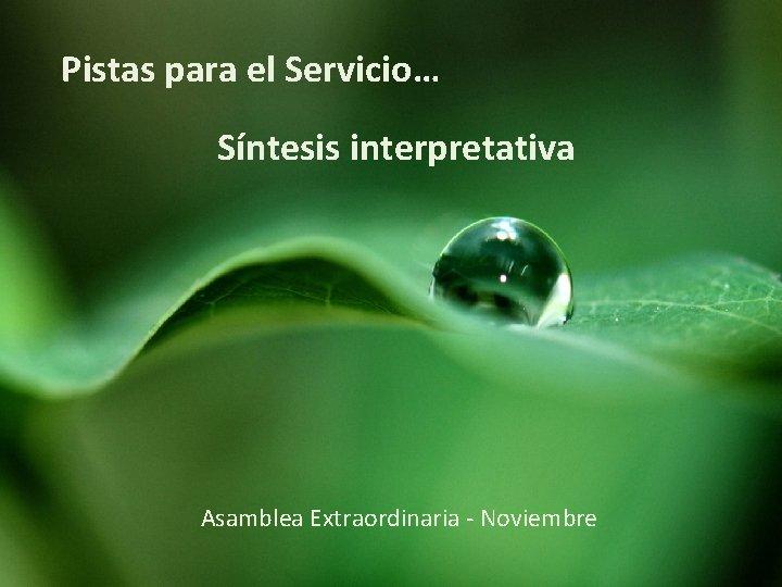 Pistas para el Servicio… Síntesis interpretativa Asamblea Extraordinaria - Noviembre