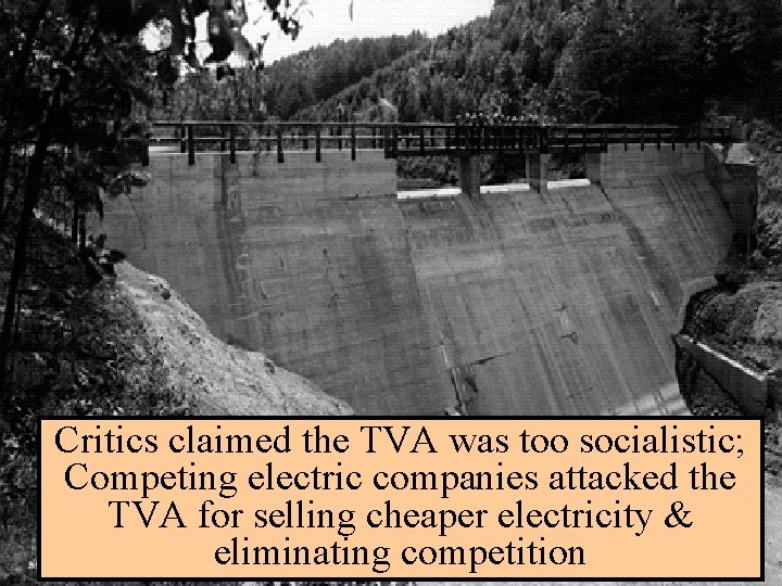 The Tennessee Valley Authority Critics claimed the TVA was too socialistic; Competing electric companies