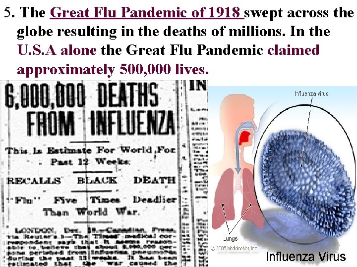 5. The Great Flu Pandemic of 1918 swept across the globe resulting in the