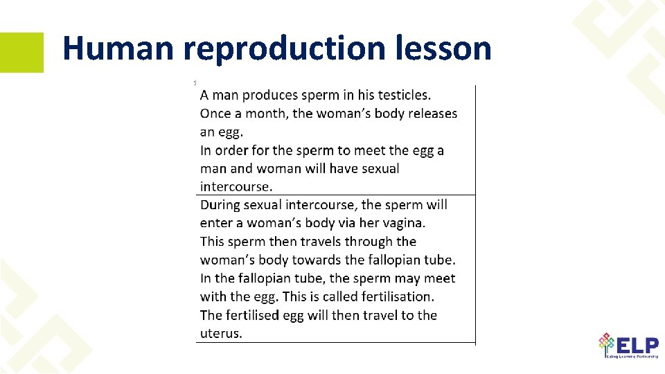 Human reproduction lesson