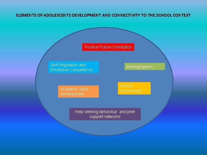 ELEMENTS OF ADOLESCENTS DEVELOPMENT AND CONNECTIVITY TO THE SCHOOL CONTEXT Positive Future Orientation Self