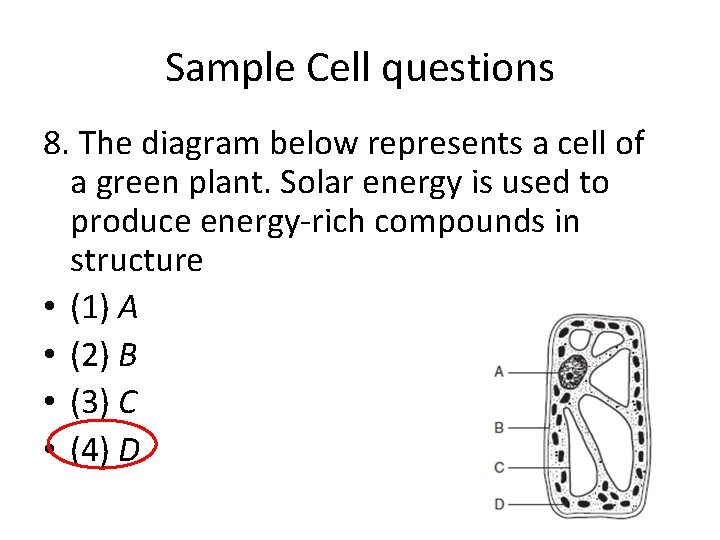 Sample Cell questions 8. The diagram below represents a cell of a green plant.