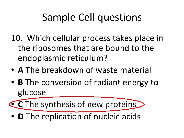 Sample Cell questions 10. Which cellular process takes place in the ribosomes that are
