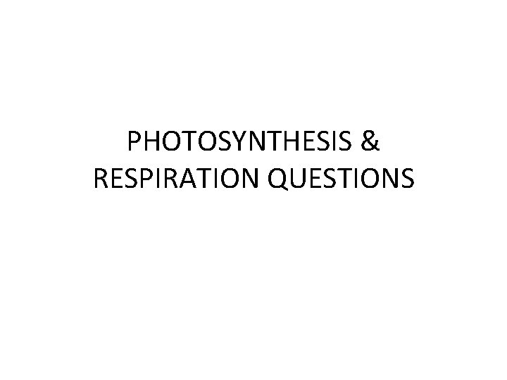 PHOTOSYNTHESIS & RESPIRATION QUESTIONS