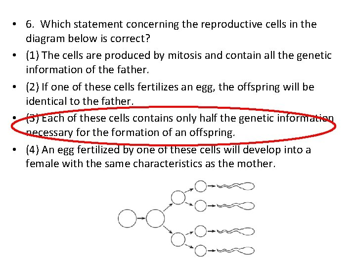 • 6. Which statement concerning the reproductive cells in the diagram below is