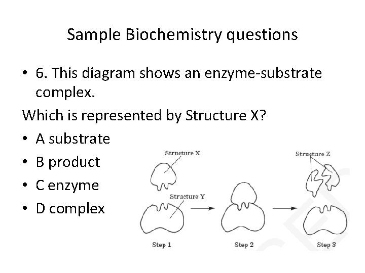 Sample Biochemistry questions • 6. This diagram shows an enzyme-substrate complex. Which is represented