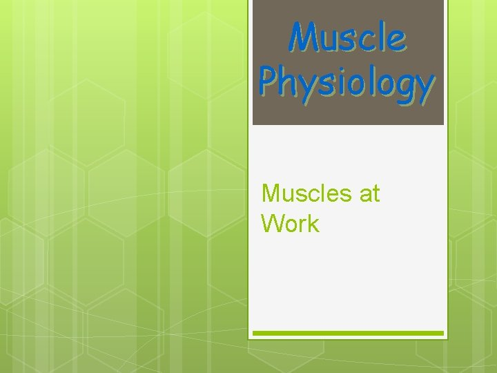 Muscle Physiology Muscles at Work