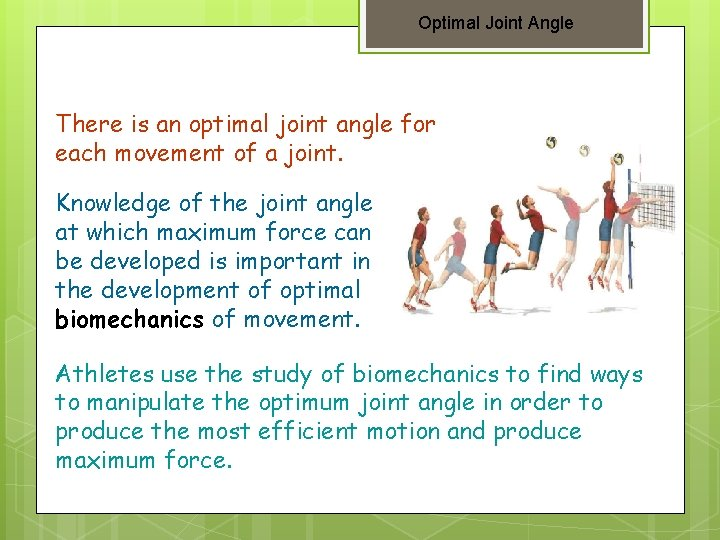 Optimal Joint Angle There is an optimal joint angle for each movement of a