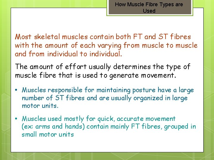How Muscle Fibre Types are Used Most skeletal muscles contain both FT and ST
