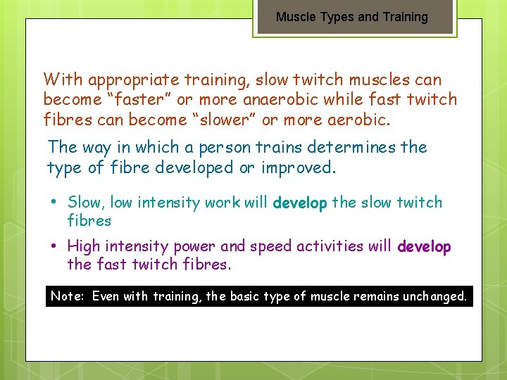 """Muscle Types and Training With appropriate training, slow twitch muscles can become """"faster"""" or"""