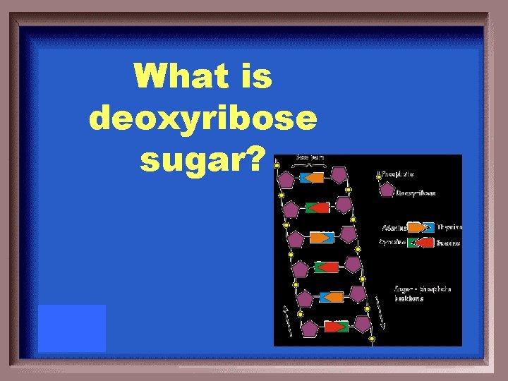What is deoxyribose sugar?