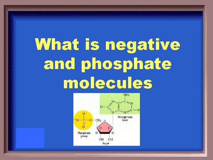 What is negative and phosphate molecules