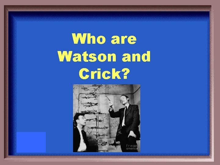 Who are Watson and Crick?