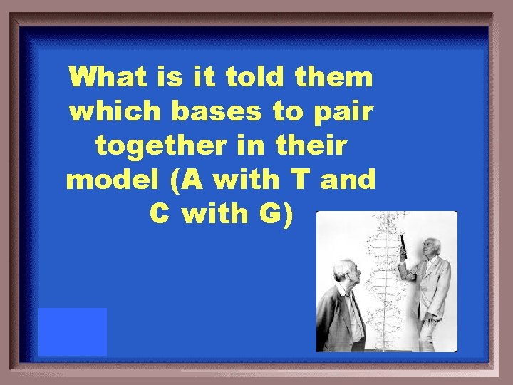 What is it told them which bases to pair together in their model (A
