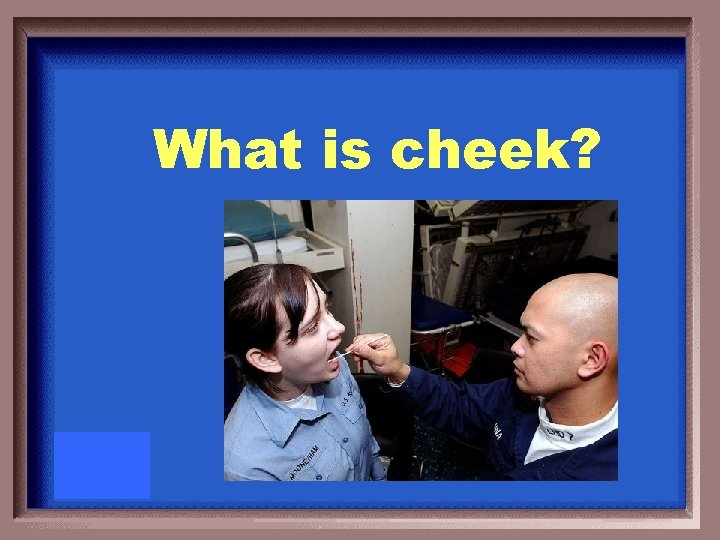 What is cheek?