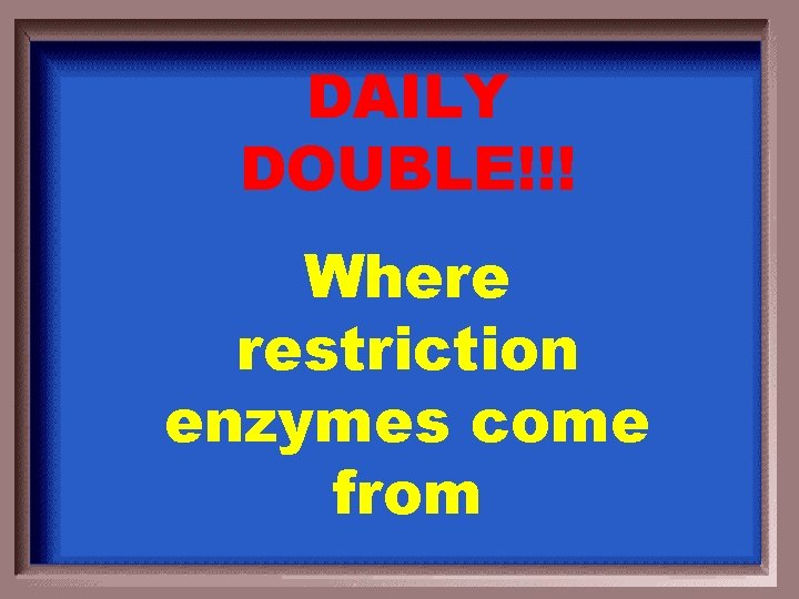 DAILY DOUBLE!!! Where restriction enzymes come from