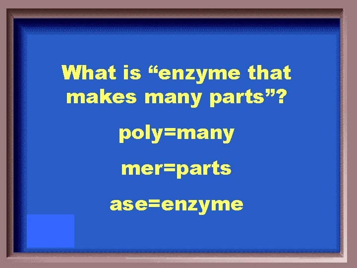 """What is """"enzyme that makes many parts""""? poly=many mer=parts ase=enzyme"""