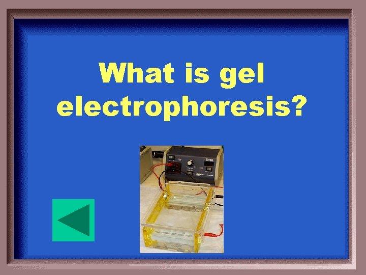 What is gel electrophoresis?