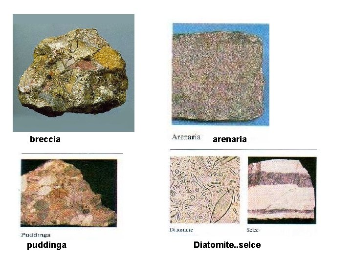 breccia puddinga arenaria Diatomite. . selce