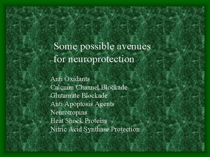 Some possible avenues for neuroprotection Anti Oxidants Calcuim Channel Blockade Glutamate Blockade Anti Apoptosis