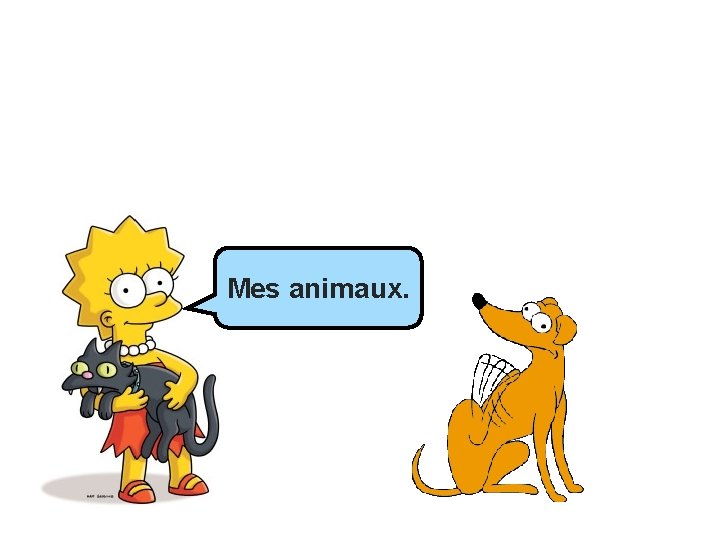 Mes animaux.