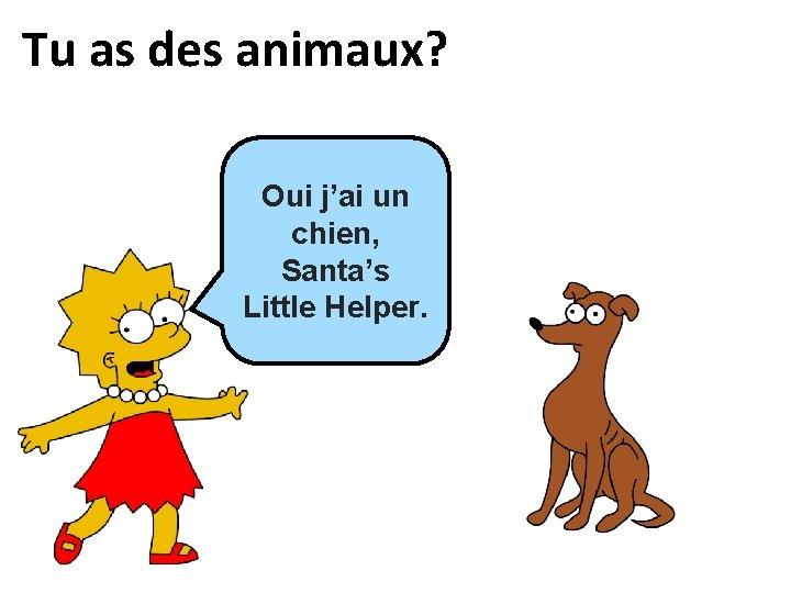 Tu as des animaux? Oui, Oui j'ai ___ un _____, chien, Santa's Little Helper.