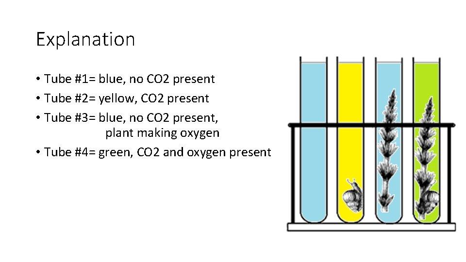 Explanation • Tube #1= blue, no CO 2 present • Tube #2= yellow, CO
