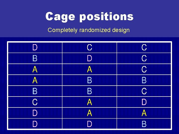 Cage positions Completely randomized design